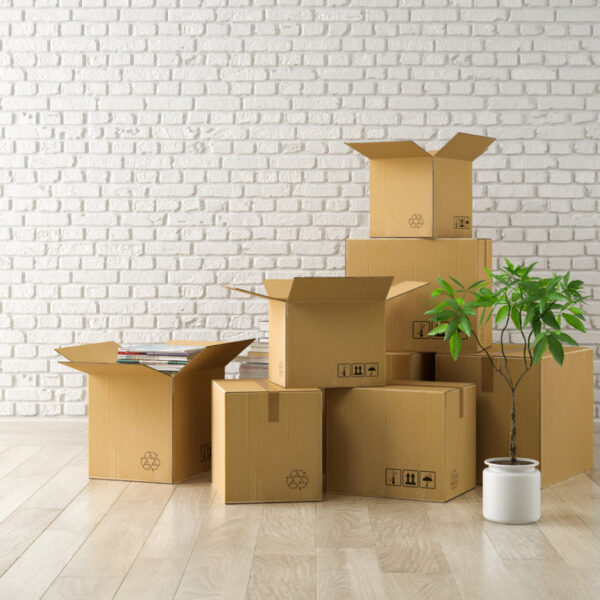 interior-with-packed-cardboard-boxes-for-relocatio-MX2JKZV (FILEminimizer)